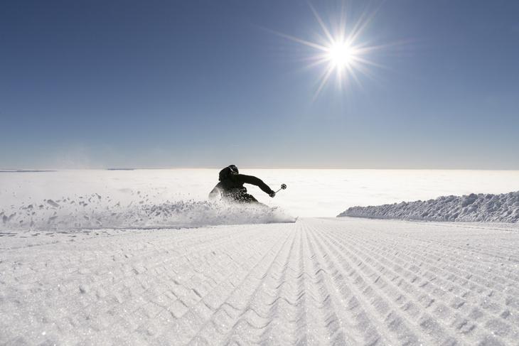 Skiskjøring Trysil